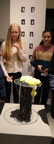 2020 Stuhlprojekt Produkte Schuelerinnen Blumenstuhl