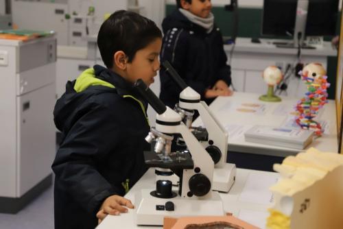 2020 Tdot Leibnizschule Biologie Mikroskope